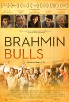Brahmin Bulls online