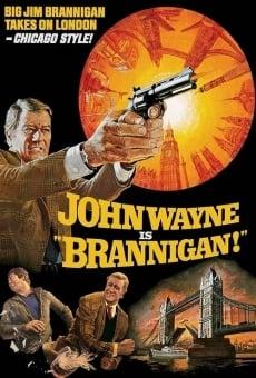 Ver película Brannigan