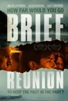 Ver película Brief Reunion