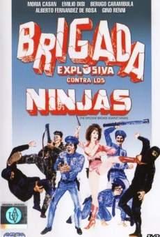 Ver película Brigada explosiva contra los ninjas