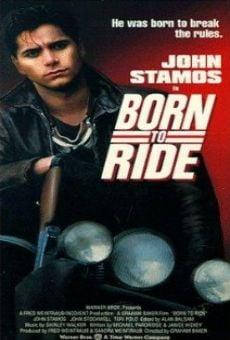 Ver película Brigada motorizada