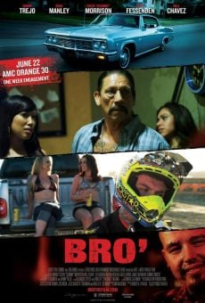 Ver película Bro'