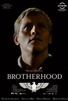 Brotherhood - Fratellanza online