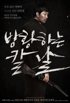 Bang-hwang-ha-neun kal-nal (Broken) online