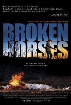 Ver película Broken Horses