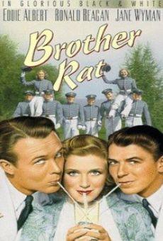 Ver película Brother Rat