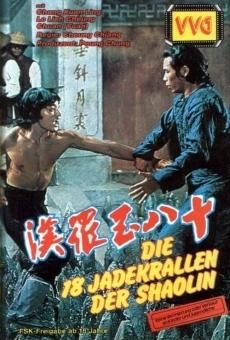 Ver película Bruce Lee contra los espíritus de Shaolin