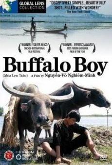 Ver película Buffalo Boy