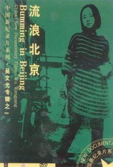 Bumming in Beijing: The Last Dreamers online