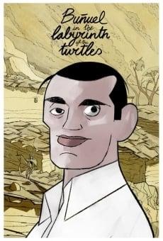 Ver película Buñuel en el laberinto de las tortugas