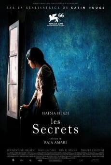 Ver película Buried Secrets
