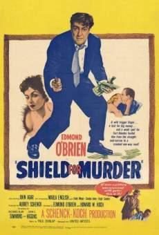 Ver película Burlando la ley