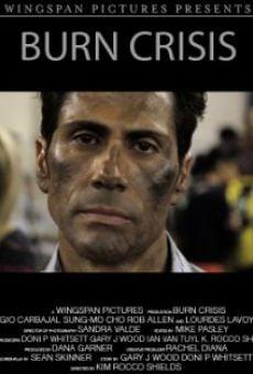 Ver película Burn Crisis