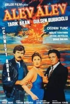 Ver película Burning