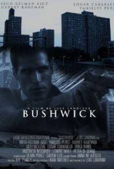 Ver película Bushwick
