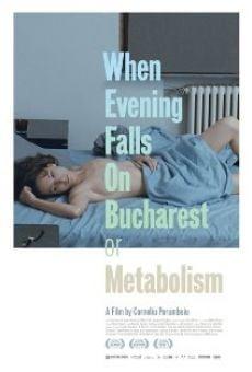 Watch Când se lasa seara peste Bucuresti sau metabolism online stream