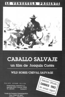 Ver película Caballo salvaje