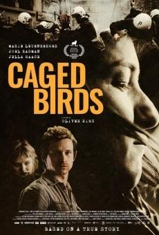 Caged Birds online
