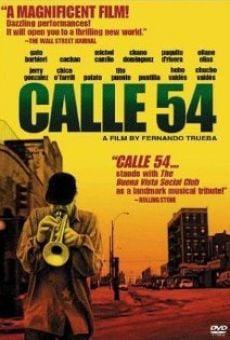 Ver película Calle 54