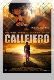 Ver película Callejero