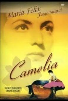 Ver película Camelia