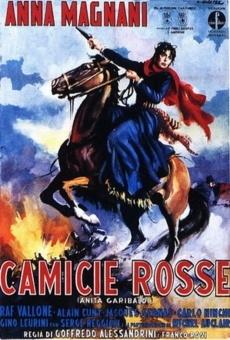 Ver película Ana Garibaldi