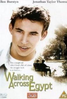 Ver película Caminando por Egipto