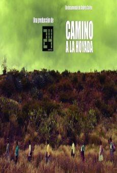 Ver película Camino a la Hoyada