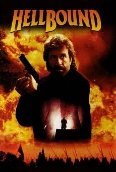 Ver película Camino al infierno