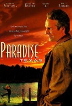 Ver película Camino al paraíso