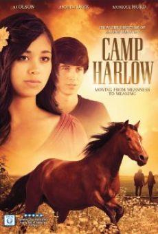 Ver película Camp Harlow
