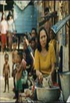 Ver película Campo 2 - Alrededor de las fronteras