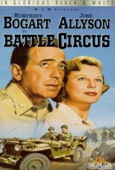 Ver película Campo de batalla