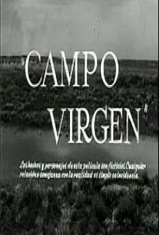 Ver película Campo virgen