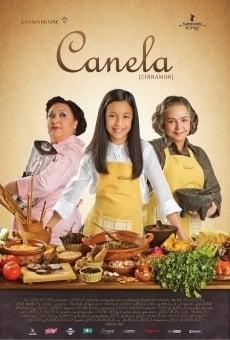 Ver película Canela