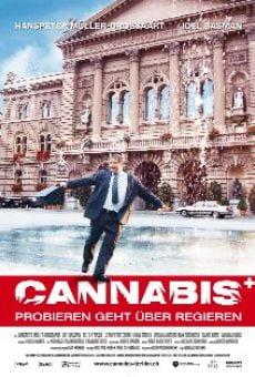 Cannabis en ligne gratuit