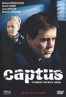 Ver película Captus
