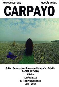 Carpayo on-line gratuito