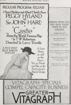 Ver película Castle