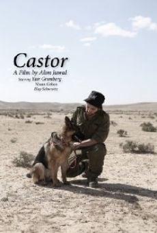 Ver película Castor