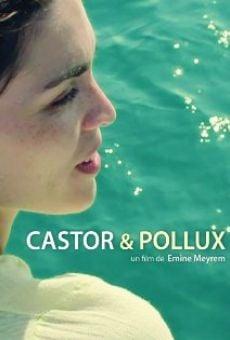 Ver película Castor & Pollux