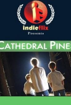 Película: Cathedral Pines