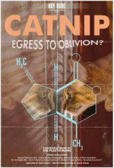 Catnip: Egress to Oblivion?