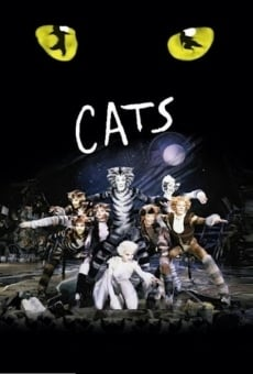 Great performances: Cats online