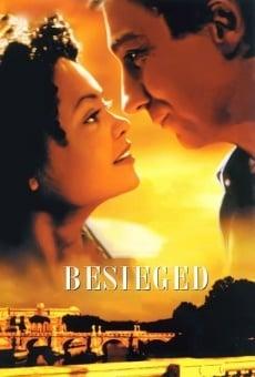 Ver película Cautivos de amor