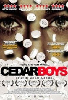 Cedar Boys online kostenlos