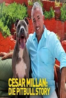 Cesar Millan: Love My Pit Bull online kostenlos
