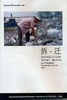 Ver película Chaiqian (Demolition)