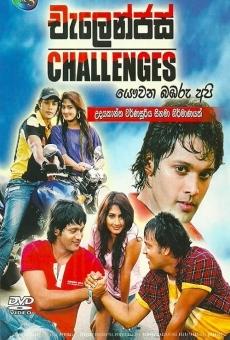 Ver película Challenges