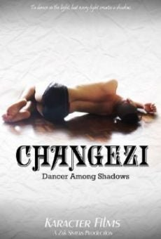 Película: Changezi, Dancer Among Shadows
